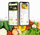 grocery app development, How much it costs for grocery app development?,